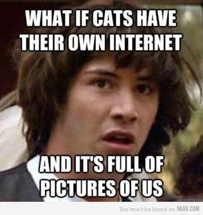 Whoa...Keanu's right.