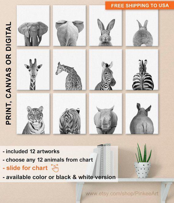 Black And White Animal Nursery Prints Animal Decor For Classroom