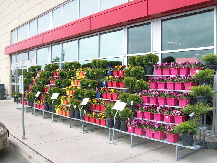 retail+floral+display   Retail Displays