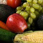 W kwestii tego kiedy można, a kiedy nie powinno się jadać owoców krąży wiele ciekawych teorii. Jedna z popularniejszych głosi, iż spożywać je można tylko...
