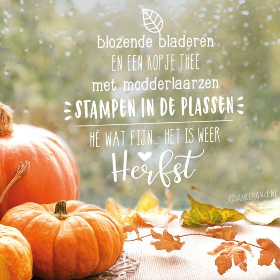 Fijne herfst quote #raamtekening voor de donkere maanden. Blozende bladeren en een kopje thee. Met modderlaarzen stampen in de plassen! Hè wat zijn.. het is weer herfst <3