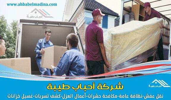 شركة نقل اثاث وعفش بالرس بخصومات وعروض مذهلة مع افضل شركه نقل عفش بالرس Bean Bag Chair Storage Chest Home Decor