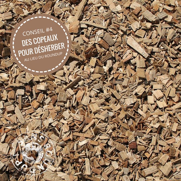 17 meilleures id es propos de copeaux de bois sur pinterest clairage sous l 39 armoire miroir - Copeaux de bois jardin ...
