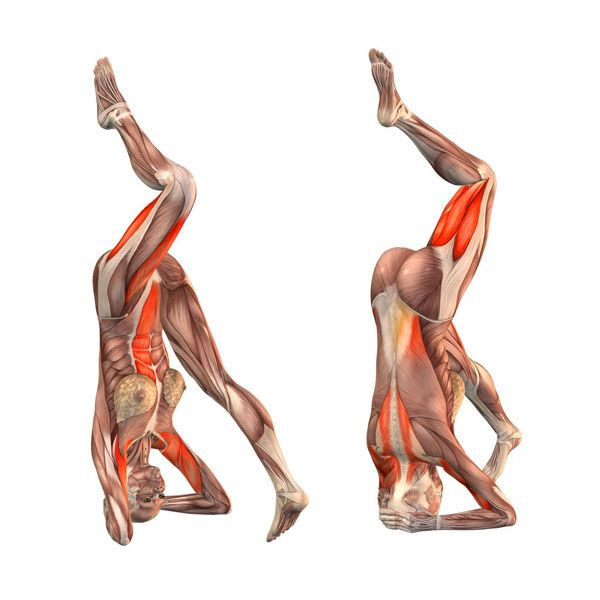 Headstand on right foot - Ekapada Sirsasana right - Yoga Poses | YOGA.com