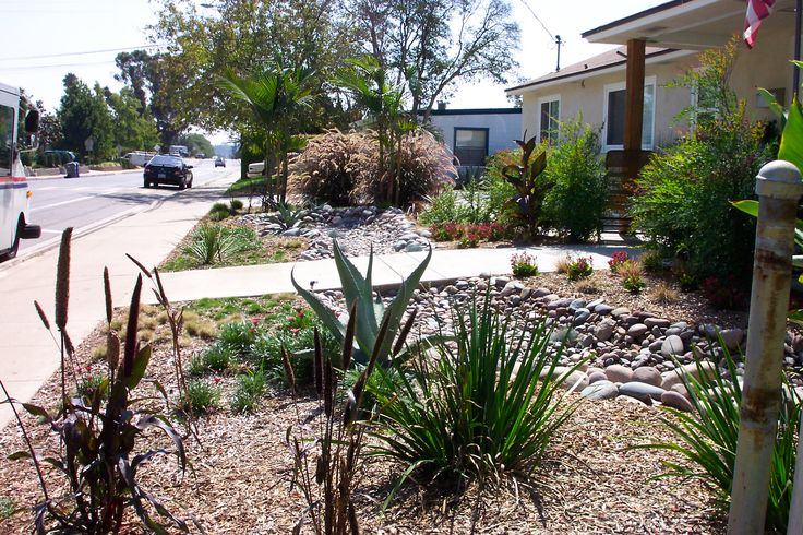 17 Best Images About Drought Tolerant Landscape On