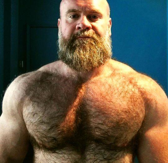 Pin on Bear dudes