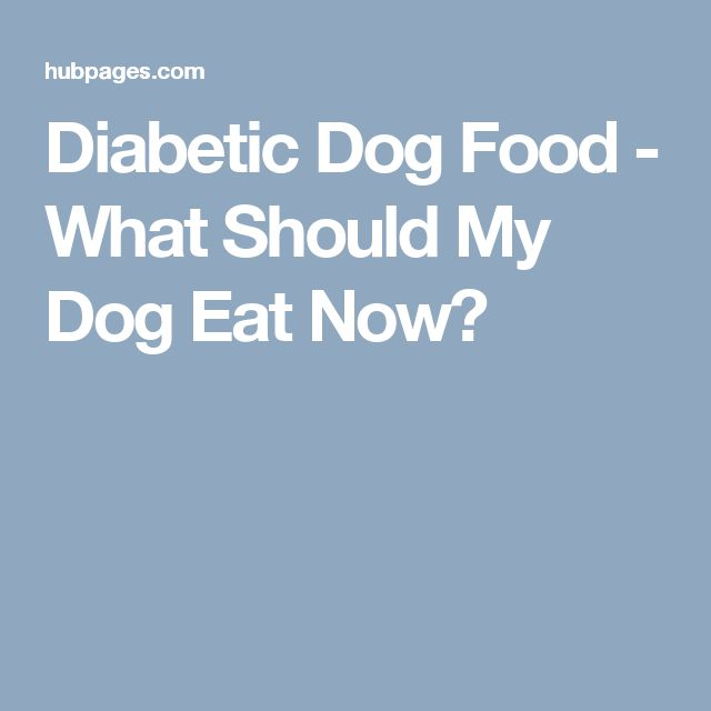 Good Dog Food For Diabetic Dogs