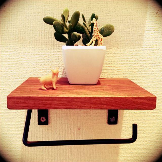 akinkoさんの、DIY,ナチュラル,多肉植物,男前,トイレットペーパーホルダー,バス/トイレ,のお部屋写真