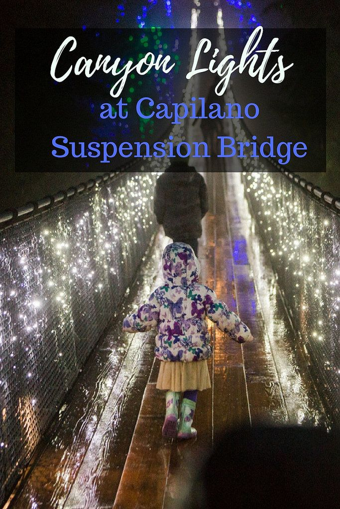 Canyon Lights at Capilano Suspension Bridge–a great family activity in the Lower Mainland, BC