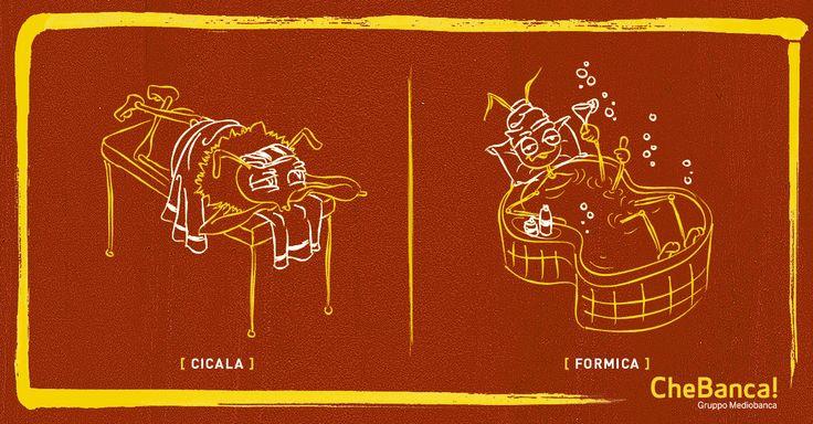 Cicala vs Formica: un massaggio a settimana o un weekend in un centro benessere?