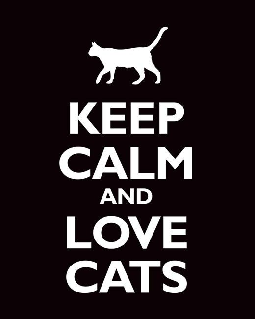 Keep Calm and Love Cats, premium art print (black), $11.99