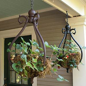 I love these hanging baskets. Must have in black!