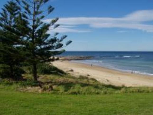 Sand-On Bulli Beach   Bulli, NSW   Pet Friendly Accommodation