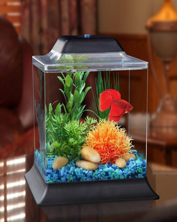 Pin On Fish Tank Design Ideas