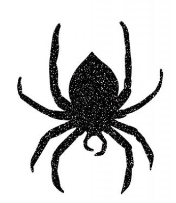 spiders are spooky decorations so scare your family and friends this halloween with these creepy crawlers