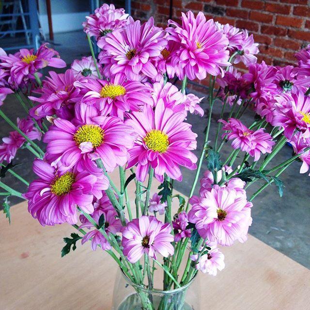 Los días en la oficina son más bonitos con detalles así 💜💜💜 #flowers #office #aboutfits