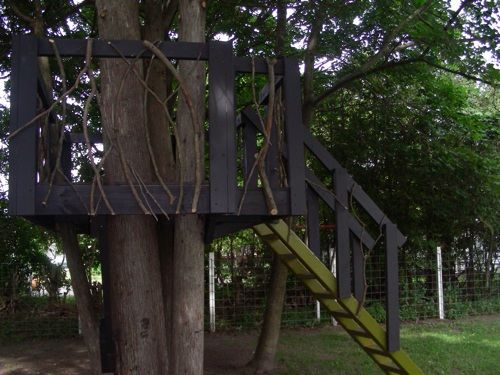 Backyard Treehouse Pediatric Therapy Center : Simple tree house, Tree houses and Trees on Pinterest