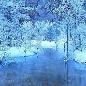 雪化粧をした田代池。氷点下でも凍結しない冬の田代池は、映画「アナと雪の女王」のワンシーンのような美しい景色を見せてくれます。                                                                                                                                                                                 もっと見る