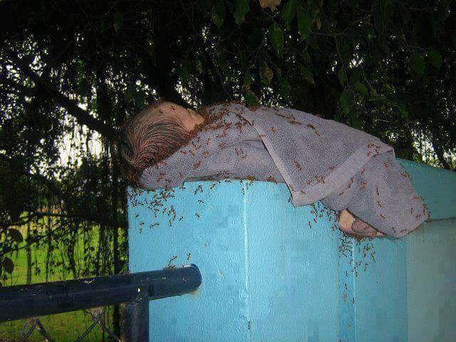 "BAYI YANG TAK DIANGGAP  Tertegun aku memandang oleh bayi yang tergeletak tak bersandang  Ia terbungkus handuk di atas pagar dikerumuni banyak semut dari semak belukar  Panas terik ia tahan dinginnya malam ia tetap menahan  Setiap detik ia kesakitan oleh gigitan semut yang ia rasakan  Tangisan melengking dan tersedu karena ditinggal ayah dan juga ibu  Andai ia bisa bicara.. ia akan minta belas kasih pada ibunya ""Wahai ibu.. mengapa engkau meninggalkanku  Apakah aku adalah aib untukmu sehingga…"