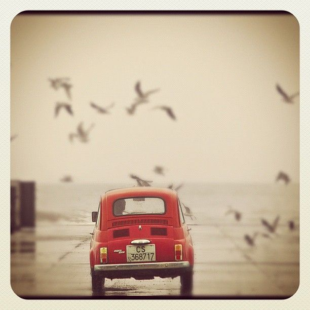 Fiat 500 by mico079