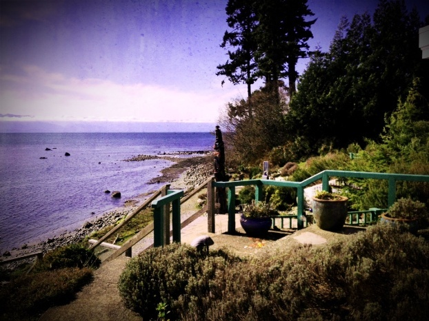 Sooke Harbour House View!