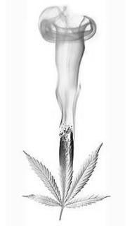 Awesome! #NORML #HRNORML #weed #marijuana #smoke