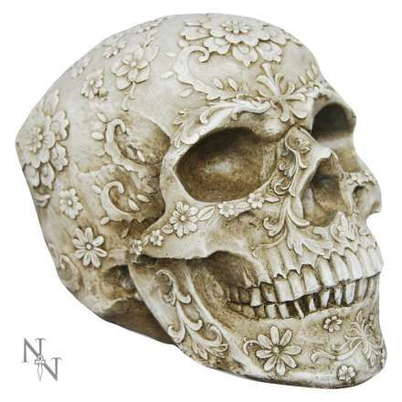 Love this sexy skull
