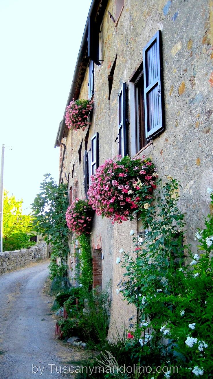 Borghetto Antico, sul Mincio, province of Verona Veneto