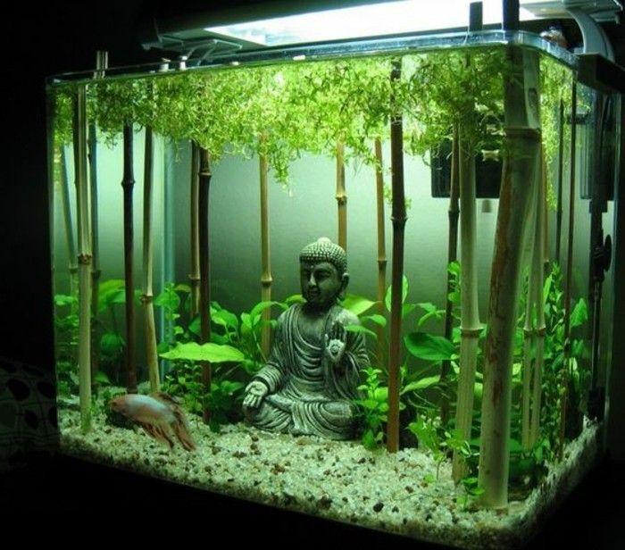 best 25+ aquarium einrichtung ideas on pinterest, Modern Dekoo