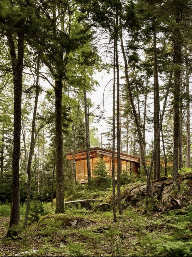 Pin By Pierre On Chalets In 2020 Cabin Home Diy Maine