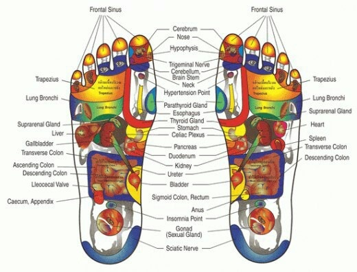 Pressure points in your feet.