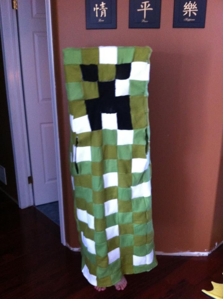 Creeper Minecraft - 2012 I sewed this together using cheap fleece blankets and some black fishnet stockings.
