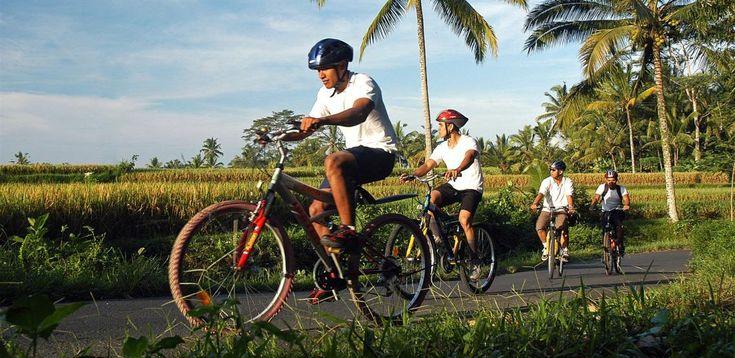 Велотур по Балийской деревне,  экскурсии на бали, бали экскурсии, экскурсии бали, экскурсии на бали цены, экскурсия бали, экскурсия на бали, стоимость экскурсий на бали, остров бали экскурсии, экскурсии бали индонезия, экскурсии на острове бали, экскурсии по индонезии, отдых на бали экскурсии, бали ява экскурсии, трансфер на бали, бали, серфинг, дайвинг, круизы, рафтинг, рыбалка, сафари парк, сафари на бали,  http://balilive.ru/excursions/velotur-po-balijskoj-derevne-12.html