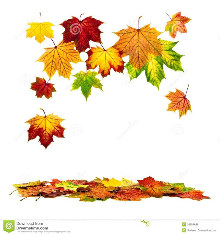 Colorful Autumn Leaves Falling Down - Download From Over 57 Million High Quality Stock Photos, Images, Vectors. Sign up for FREE today. Image: 26154646