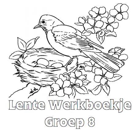 Lente Werkboekje Groep 8