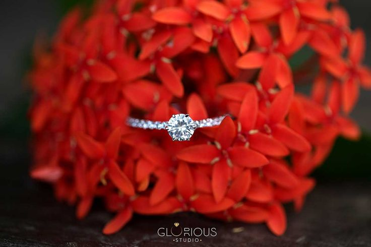 Independent classic and beautiful photography of Diamonds inspired with nature.   jewellery photography in #surat #diamondjewellery #jewellery #photography #india #surat #macrophotography #productshoot  #productphotography #naturephotography #outdoorjewelleryphotography #advertisement  #thegloriousstudio