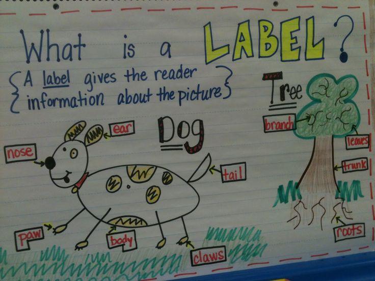 Writing Workshop Kindergarten Anchor Charts | Kreative in Kinder: Writer's Workshop Labeling!