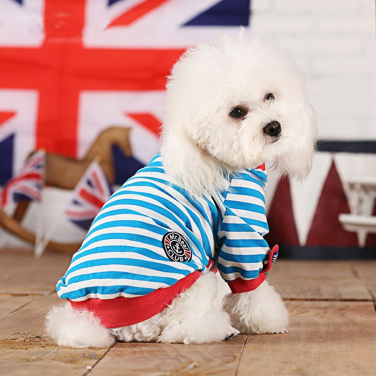 Aliexpress.com : Buy Free shipping small pet dog clothes teddy autumn and winter clothes dog vest small dog coat cheap dog clothes high  on ...