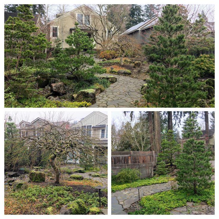 87 best images about portland oregon landscaping ideas on for Garden design winter 2018