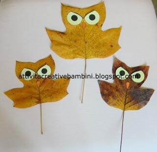 Foglia gufo  Leave owl