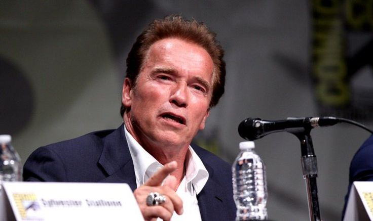 The Terminator makes sense! Arnold Schwarzenegger put forward an undeniable analogy regarding the climate crisis.