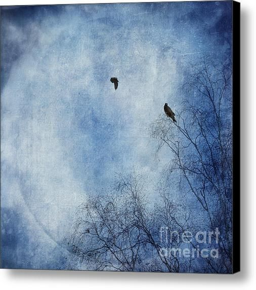 Come Fly With Me Canvas Print / Canvas Art By Priska Wettstein