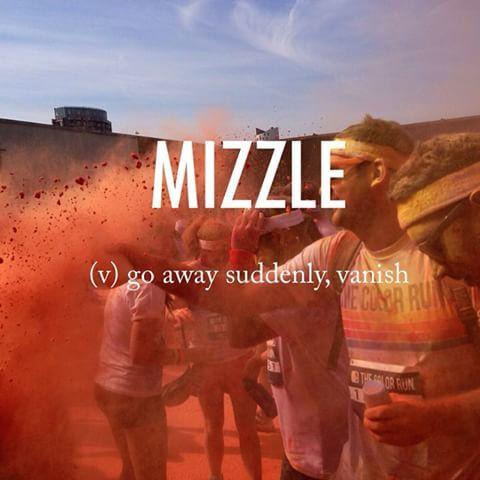 Mizzle |ˈmɪz(ə)l| late 18th century unknown origin