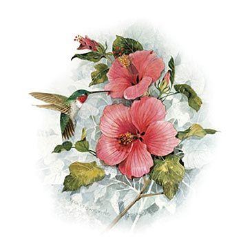 Hummingbird Tattoos Designs | Flower And Hummingbird Tattoo