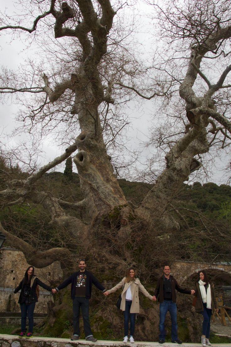 πλάταος, χωριό κράσι, χερσονησσος, greek travel bloggers