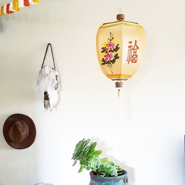 At Home with Tesssuti Zoo.  Our Large Cantoloupe colored Lantern fitting perfectly in its new place. 🏮🏮🏮This is a handpainted silk gauze Chinese lantern we carry!  Come stop by and see which ones call to you....🏮🏮🏮 The Feast of Lanterns is in July, so dont wait, grab them while they're HOT! 💥  #tessutizoo #california #shoplocal#pacificgrove #montereybay #shopsmall #fun #handmade #lanterns #festivaloflanterns #followformore #bohemian #feast #feastoflanterns #chineselanterns…