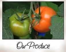 Hotchkiss Produce