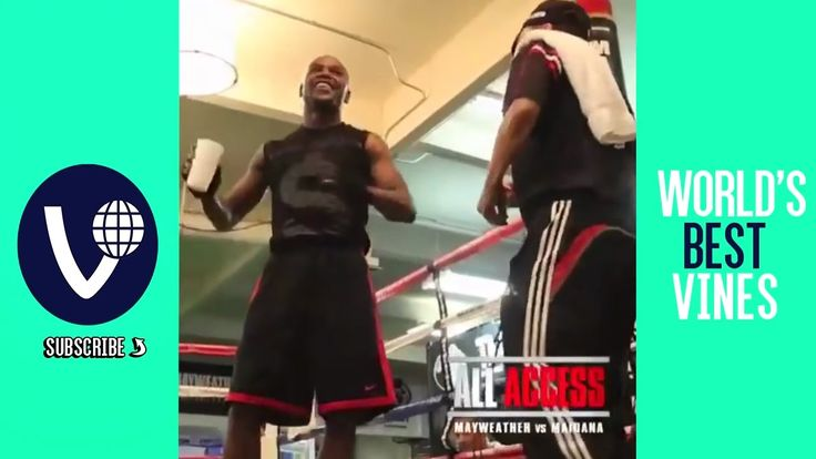 Video Floyd Mayweather All Vines & Best Instagram Moments 2016 ! World's...