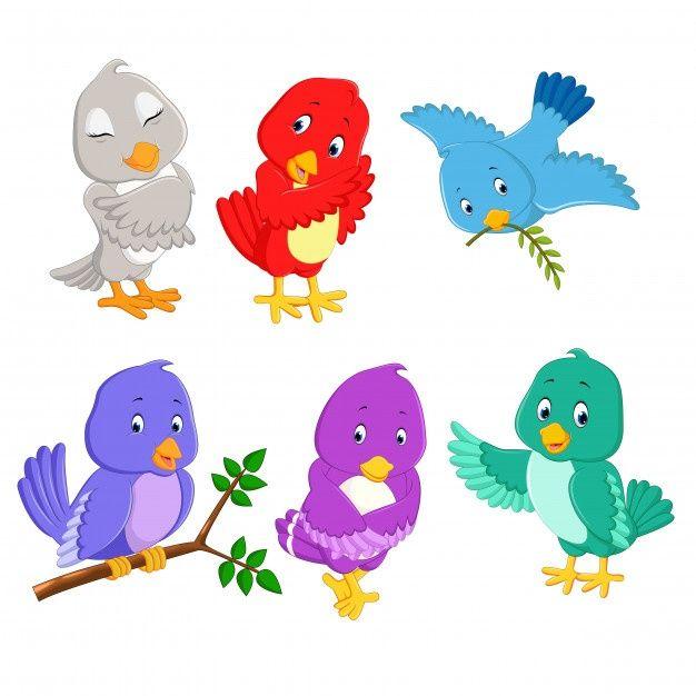 Bird Cartoon Set Collection Cartoon Birds Pretty Birds Bird Drawings