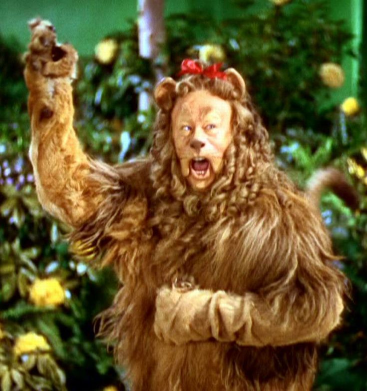 The Cowardly Lion.  King of the forest!